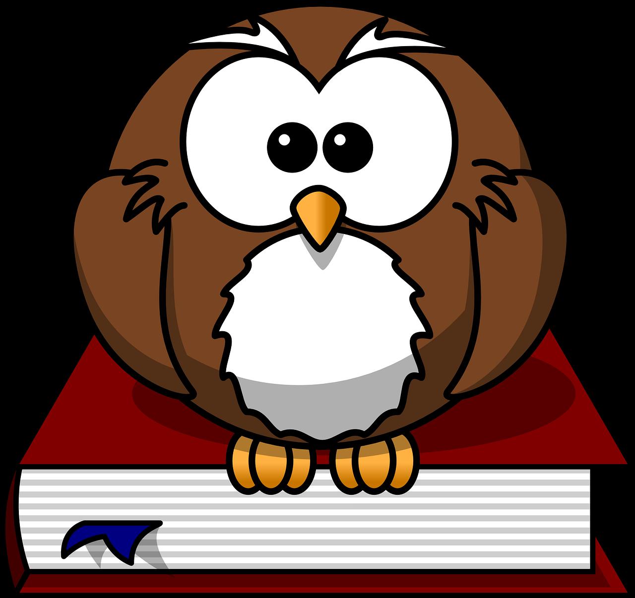 本の上にとまるフクロウ