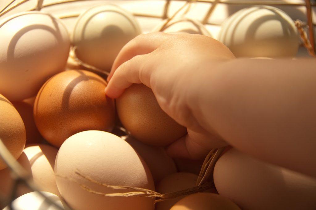盛られた卵と卵を掴む手